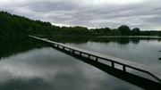 До вашої уваги пропонується зариблене Озеро 10га в Ковельському р-н.