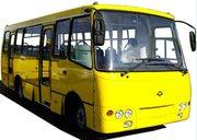Водитель автобуса (кат Д )
