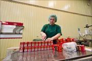 Рабочие на упаковку чая Lovare